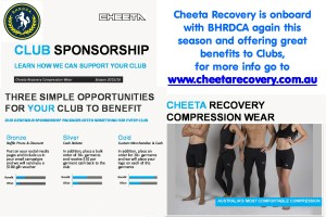 cheeta flyer for facebook page and website